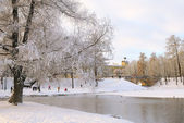 Park in Gatchina in winter and Great Gatchina Palace , near Pete — Stock Photo