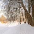 Stock Photo: Park in Gatchinin winter, near Petersburg, Russia.