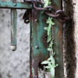 Locked rusty gate — Stock Photo