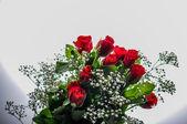 愛のバラ — ストック写真