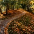 Autumn in Tallinn — Stock Photo