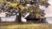在海边的小屋 — 图库照片
