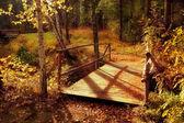 Brücke im wald — Stockfoto