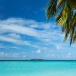 美しい熱帯の島 — ストック写真 #16899655