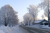 Winter road surrounded by icy trees — Stok fotoğraf