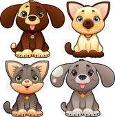 Lindos perros y gatos. — Vector de stock