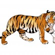Royalty-Free Stock Vector Image: Red tiger.
