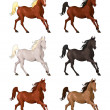 Horses in different colors. — Stock Vector #42110369