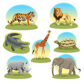 African animals iwith graphic backgrounds.  — Stock Vector