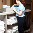 Pretty housekeeping executive busy working — Stock Photo #13537769