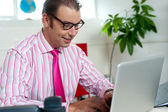 Busy employee in office working on laptop — Stock Photo