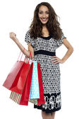 Shopaholic brunette carrying vibrant color bags — Stock Photo