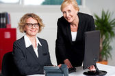 Cheerful businesswomen working in office — Stock Photo