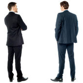 Back pose of handsome young corporates — Stock Photo