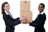 Es ist Teamarbeit. Business-Konzept. — Stockfoto