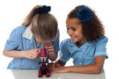 Girls using microscope in lab — Stock Photo