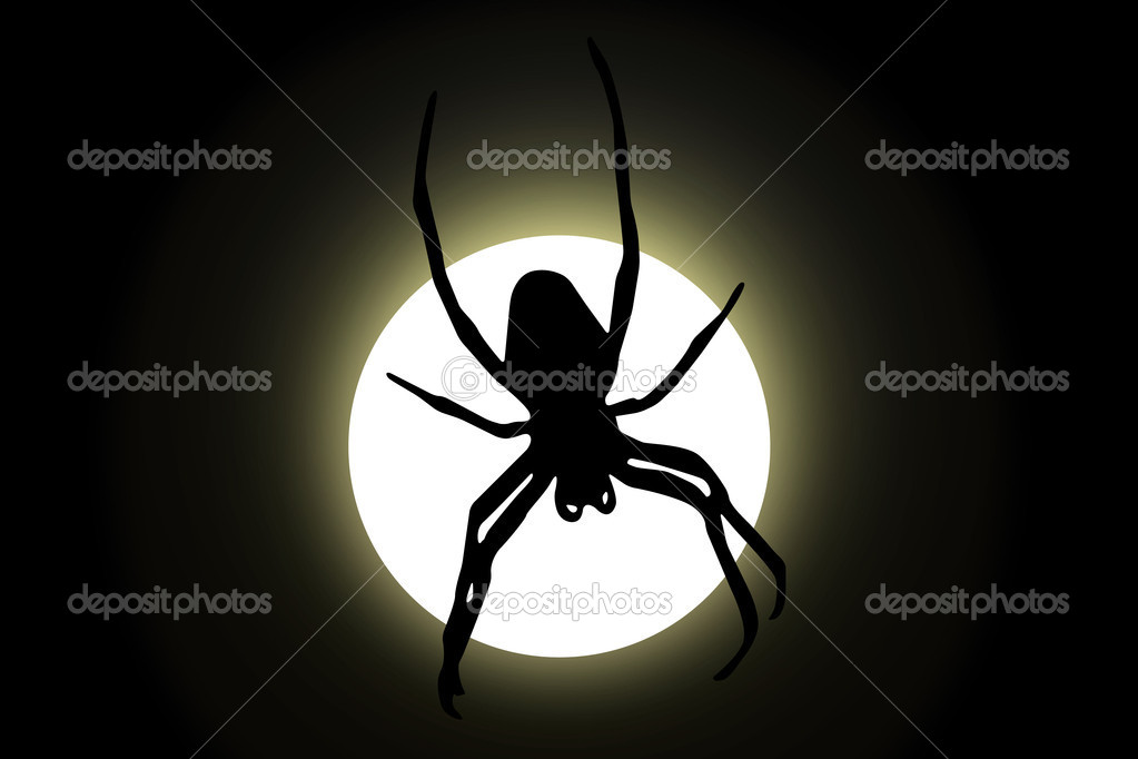 Spider and moon — Stock Vector #13997349