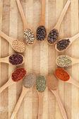 Cirkel av kryddor — Stockfoto
