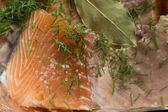 Peixe com endro e sal preparados para bolos — Foto Stock
