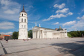 VILNIUS, LITHUANIA: August 12, 2013 - Granite Cathedral pubic domain square area in the center of the old European Vilnius city in Lithuania. — Stock Photo