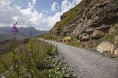 Hiking path on mountain in Switzerland — Stock Photo