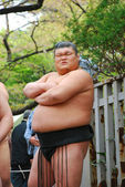 An unidentified Sumo wrestler competes in Yasukuni Shrine — Stock Photo
