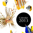 2013 calendar cover page — Stock Photo #33126515