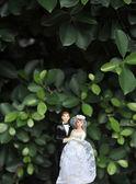 Wedding couple dolls — 图库照片