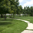 Stock Photo: Curved road in the grass