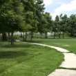 Curved road in the grass — Stock Photo #19510925