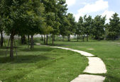 Curved road in the grass — Stock Photo