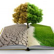 Open book with green nature — Stock Photo #23242292