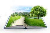 Libro aperto con verde natura — Foto Stock