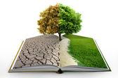 Open boek met groene natuur — Stockfoto
