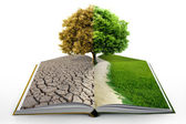 Open book with green nature — Stok fotoğraf