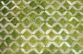 Grama verde, com passagem de pedra no parque — Foto Stock