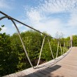 Hanging bridge in the forest — Stock Photo