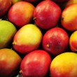 Stock Photo: Mango background