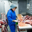 Meat factory — Stock Photo