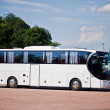 Foto Stock: White bus