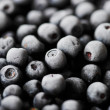 Frozen blueberries — Stockfoto