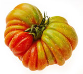 Beefsteak large tomatos — Stockfoto