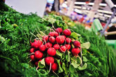 Radishes in store — Stockfoto