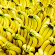 Bananas — Stock Photo #41901727
