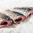 Stock Photo: Carp fillet