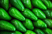 Avocados. — Stockfoto