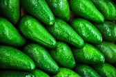 Avokado. — Stockfoto