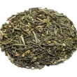 Classic green tea sencha premium — Stock Photo