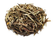 Green tea pine needles — Stock Photo