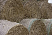 Big haystack — Stock Photo